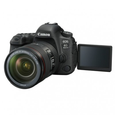 佳能(Canon) EOS 6D Mark II 照相机(50 1.4镜头+24-105广角+64G内存卡+相机包)